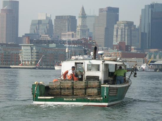 Lobster boat and Boston skyline from Green Turtle
